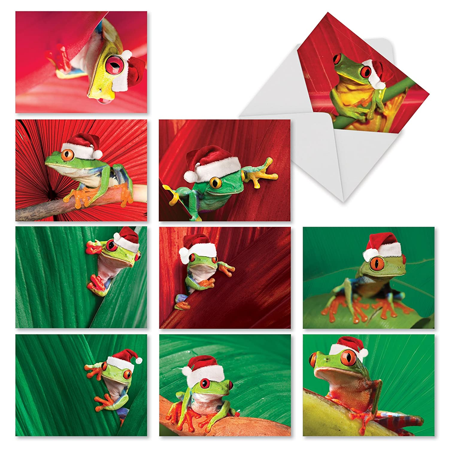 Yule Frogs\' Christmas Greeting Cards, Boxed Set of 10 Tree Frogs ...