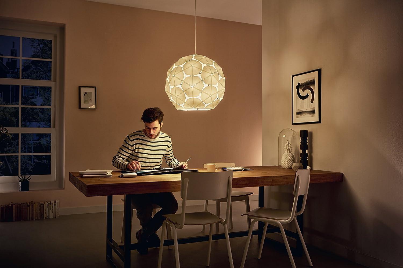 Philips Luminaire int/érieur Smart volume Corkwood suspension blanc 1x60w 230v