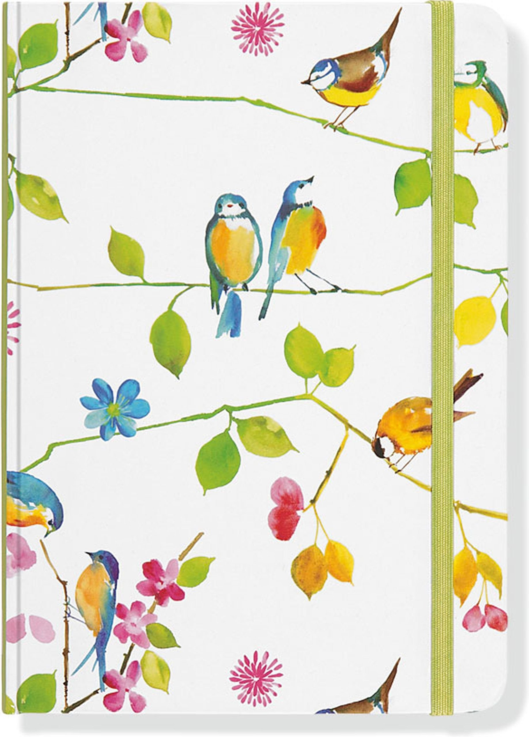 Download Watercolor Birds Journal (Diary, Notebook) pdf