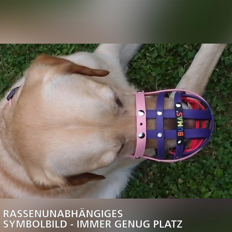 black//orange BUMAS/® BioThane/® dog muzzle in Size 7