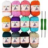 12x50g Pelotes de Laine en Acrylique Multicolores avec 2 Crochets pour Crochet de Fil à Tricoter par ilauke