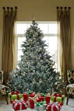 7.5 FT Prelit Premium Spruce Hinged Artificial Christmas Tree 1500 Realistic Branch Tips / Pines With 550 LED lights and Stand