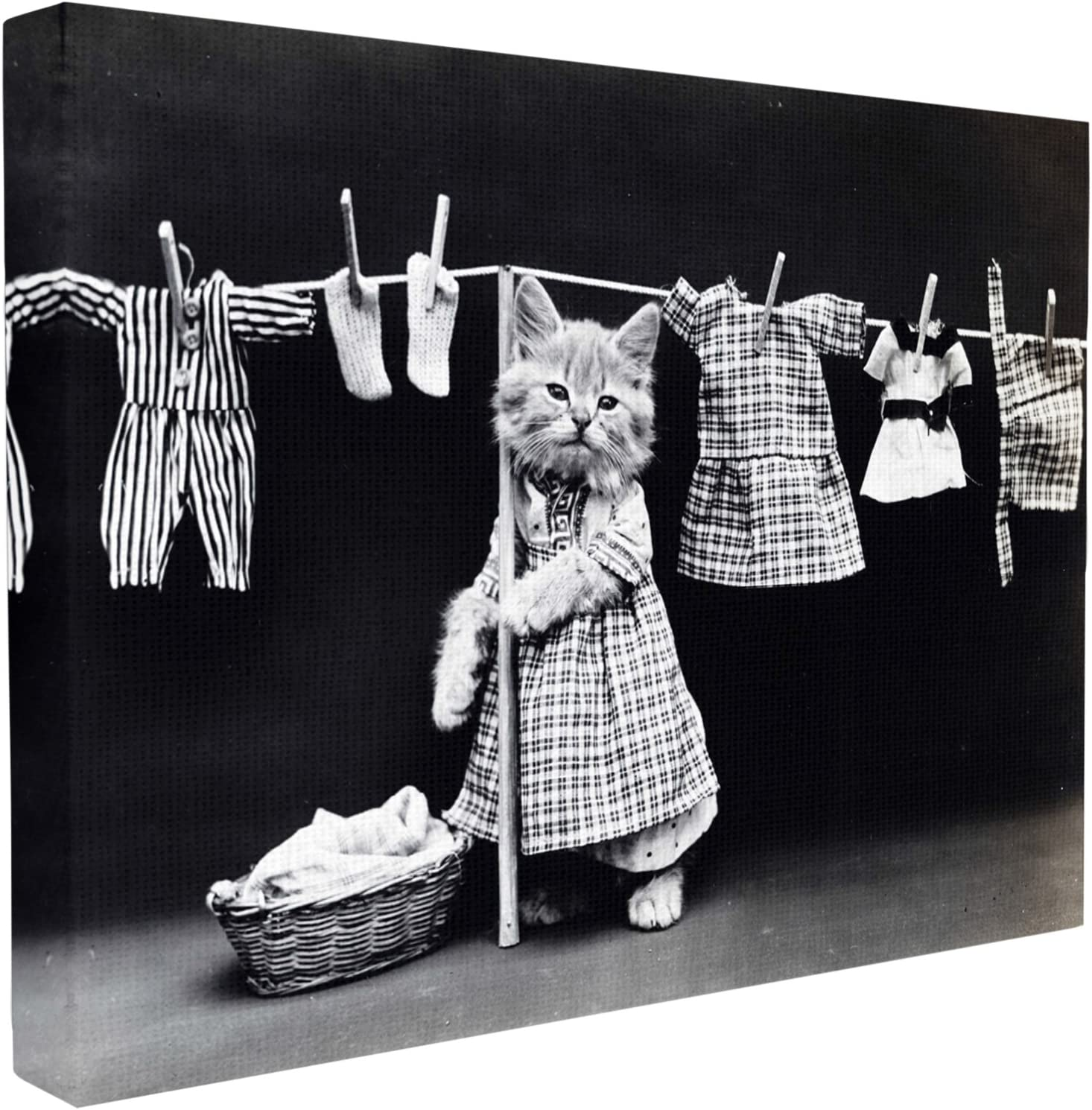 Stupell Industries Kitten Does The Laundry Stretched Canvas Wall Art, Proudly Made in USA