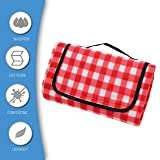 Extra Large Picnic Blanket [2 Pack] | Oversized
