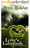 Love's Labyrinth: a time travel romance