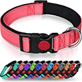 Taglory Reflective Dog Collar with Safety Locking Buckle, Adjustable Nylon Pet Collars for Small Dogs, S, Baby Pink