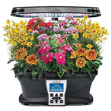 Amazon.com : Miracle-Gro AeroGarden Mountain Meadows Flower Seed ...