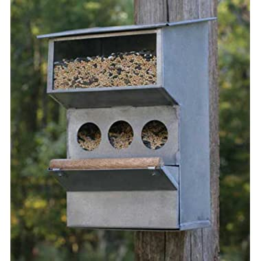 Cute Garden Decor - Country Farmhouse Style Bird Feeder