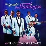 The Sound of the Flamingos/Fla