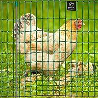 VOSS.farming Premium Hühnerzaun 112cm farmNET 50m   Hühnernetz Geflügelnetz Geflügelzaun   16 Pfähle 2 Spitzen   Grün ohne Strom