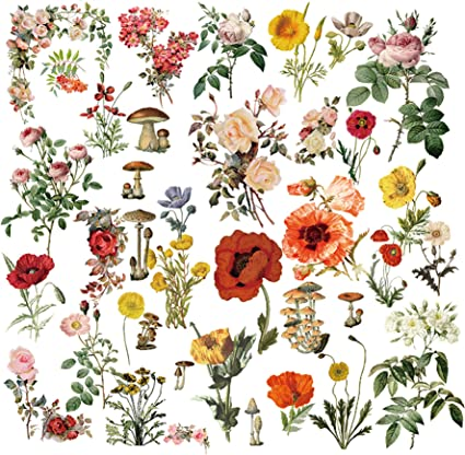 CATaireen 50pcs Travel Scrapbook Vintage Paper Washi Stickers Flowers Grass Decoupage Add On Items Embellishments Chipboard Mixed Media Supplies Card Stock Paper