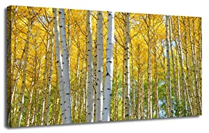 """Ardemy Canvas Wall Art Yellow Birch White Branch Forst Landscape Artwork Prints, Modern Nature Picture Painting Framed Large Size for Living Room Bedroom Kitchen Home Office Decor 48""""x24"""" Waterproof"""