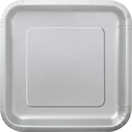Square Silver Paper Plates 14ct  sc 1 st  Amazon.com : rectangle paper plates - pezcame.com