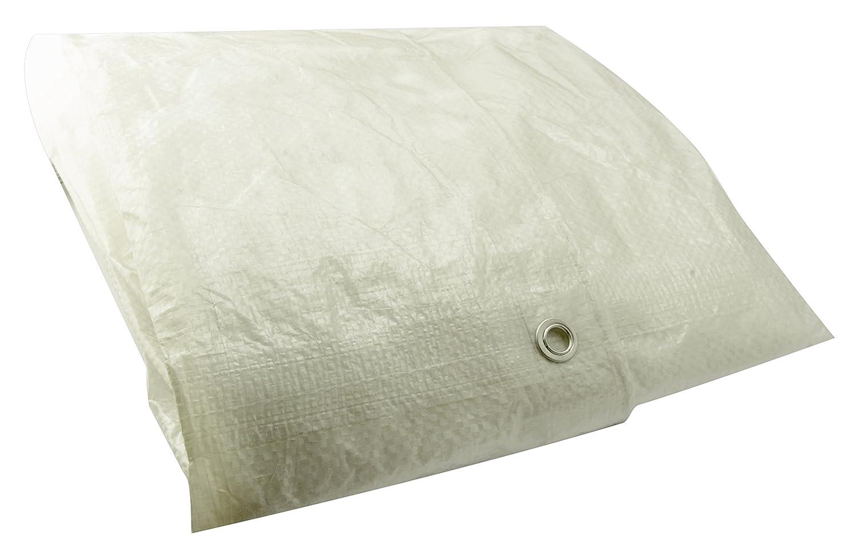 Erickson 57061 Clear White Economy Grade Poly Tarp, 8' x 10', 1 Pack 8' x 10'