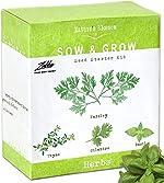 Nature's Blossom Herb Garden Seed Starter Kit. Grow 4 kitchen Herbs