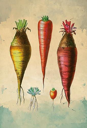 Amazon.com: Kitchen Print Kitchen Decor Carrot Varieties Art Rustic ...