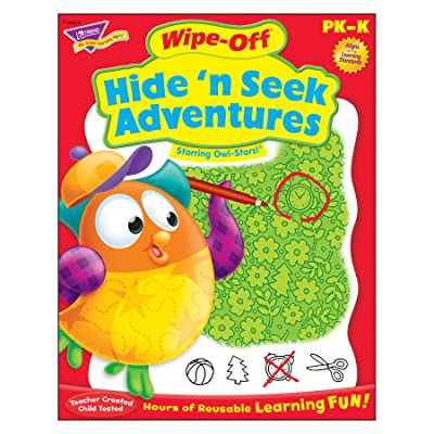 Trend Enterprises Hide 'n Seek Adventures Owl Stars! Wipe Off Book Novelty: Toys & Games