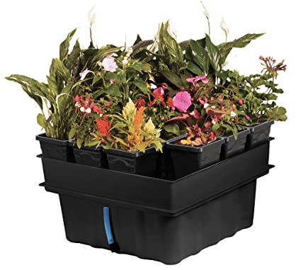 Lovely Hydroponic Vegetable Garden Kit