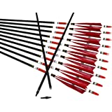 TTAD 12PCS Red Turkey Feather 31 inches Carbon Arrows Replacement Tips Targeting Arrows Archery for Recurve Longbow Hunting&P