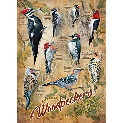Cobblehill 85007 500 pc Notable Woodpeckers Puzzle, Various: Toys & Games