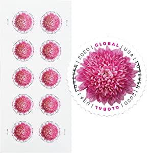 Global Chrysanthemum Sheet of 10 International Mail First Class Forever US Postage Stamps Holiday Celebration Flower (10 Stamps)