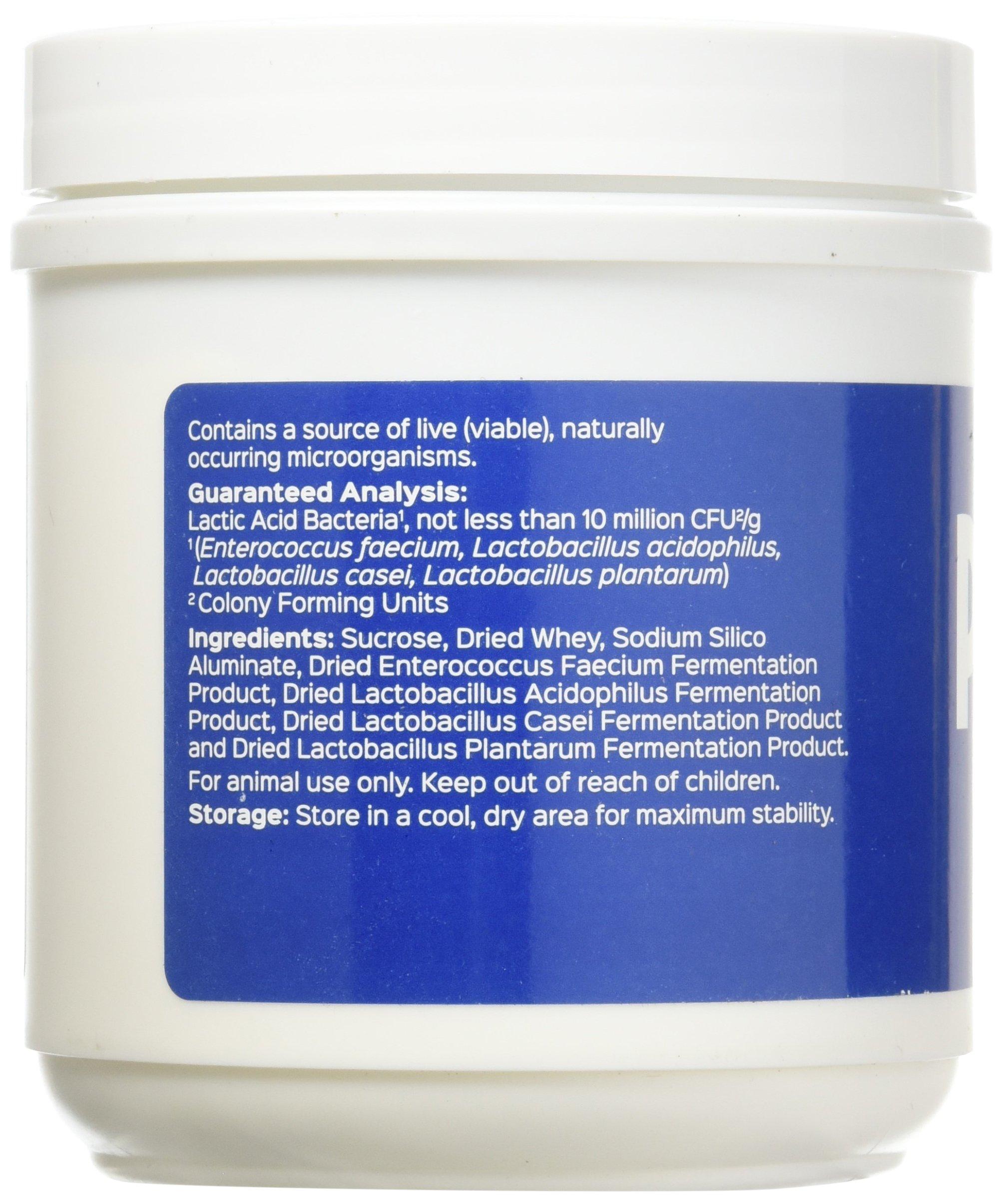 Probios Vet Plus Dispersible Digestive Powder, 240gm 3