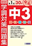 30年度静岡県中3第1回学調対策問題集