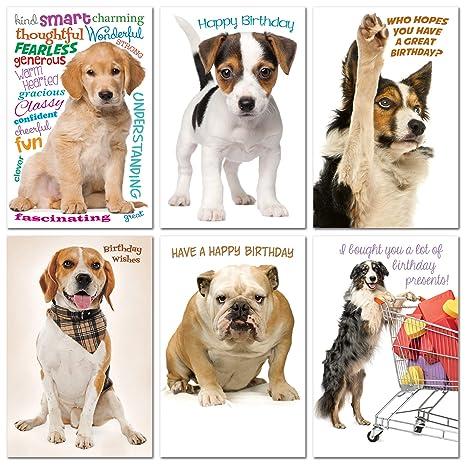 Amazon.com: Prime Greetings - Juego de 6 tarjetas de ...