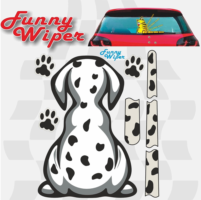 Quattroerre - Pegatinas Funny Wipers, para luna trasera de coche, perro, referencia 1248: Amazon.es: Coche y moto