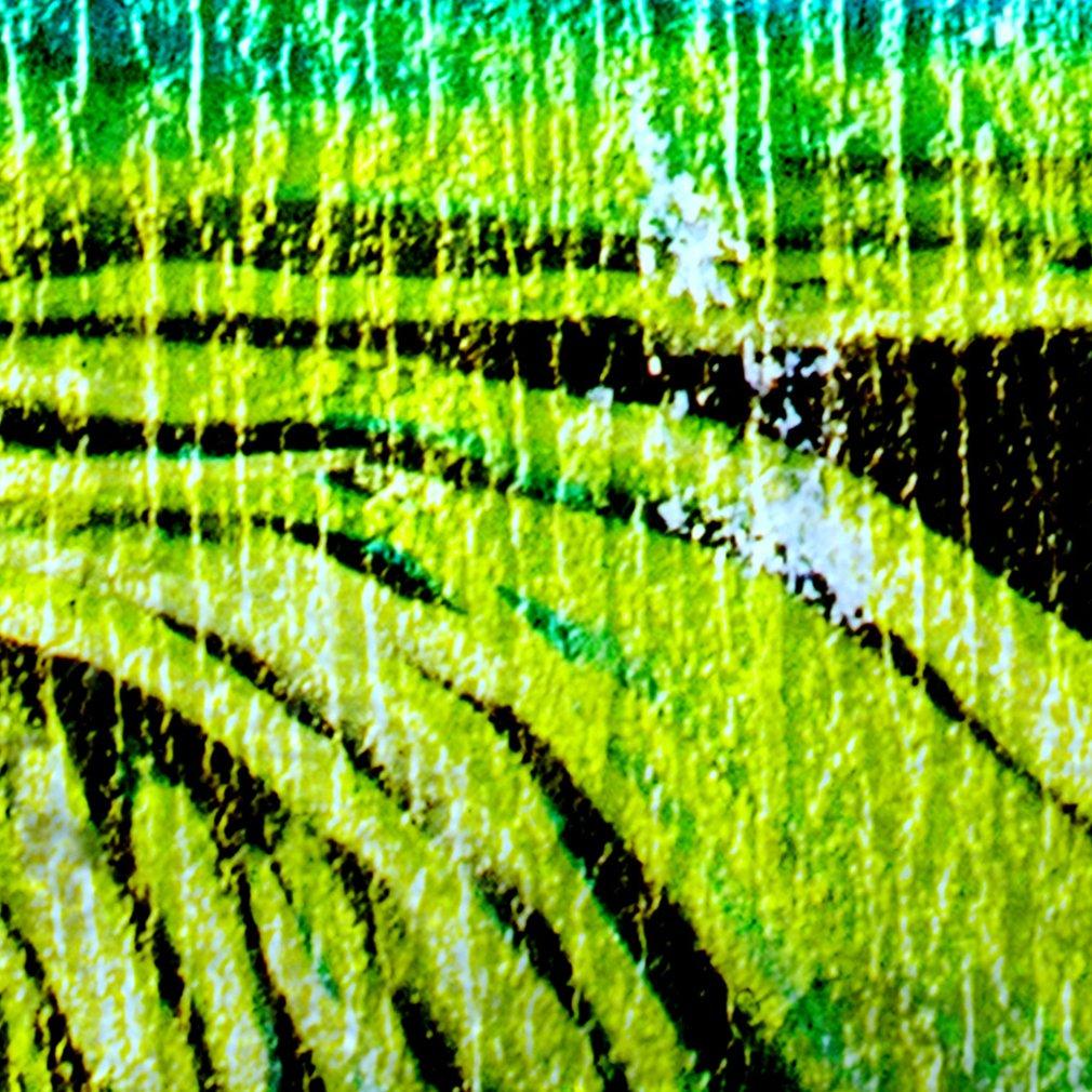 Decomonkey Fototapete selbstklebend Graffiti Jugendzimmer Jugendzimmer Jugendzimmer 245x175 cm XL Selbstklebende Tapeten Wand Fototapeten Tapete Wandtapete klebend Klebefolie Street art B07H5L5XZH Wandtattoos & Wandbilder 07bf41