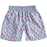 Toddler Baby Boys Summer Clothes One Piece Beach Shorts Playsuit Beach Swim Trunks Bathing Suit Clothes Infant