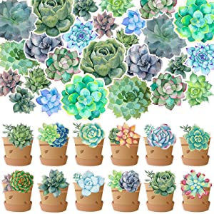 72 Pieces Potted Succulents Cut-Outs Watercolor Succulents Cutouts 12 Styles Succulents Accents Decor Succulent Bulletin Board Paper-Cut Classroom Wall Party Decoration with 120 Pieces Glue Point Dots
