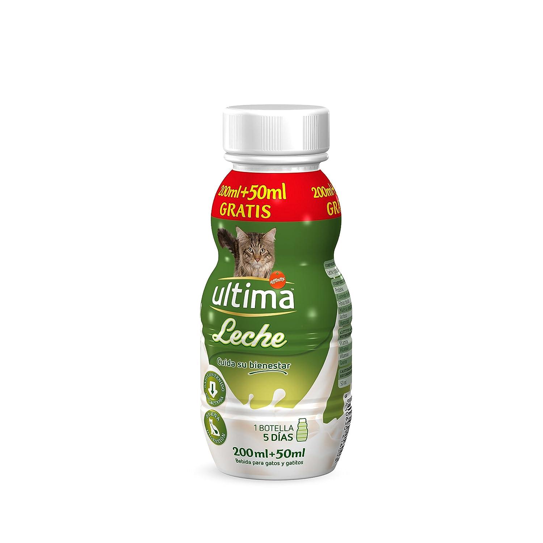 Ultima Leche para Gato de Fácil Digestión - 6 Botellas: Amazon.es: Productos para mascotas