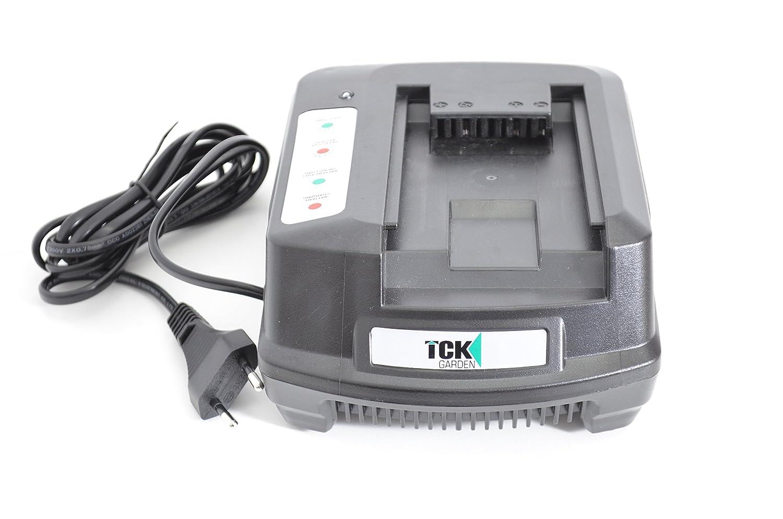 Tck CH40V - Ch cargador de 40 v de la batería de 40v: Amazon.es ...