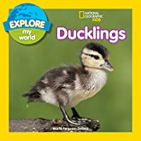 Explore My World: Ducklings (Explore My World
