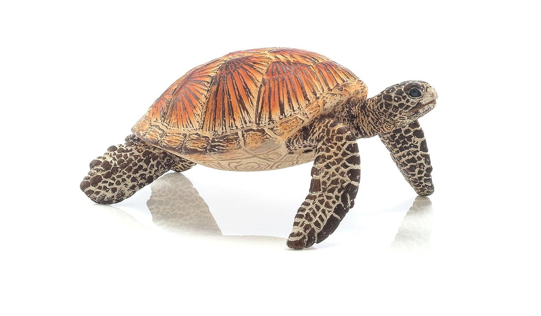 Warning turtles amp tortoises inc - Warning Turtles Amp Tortoises Inc 9