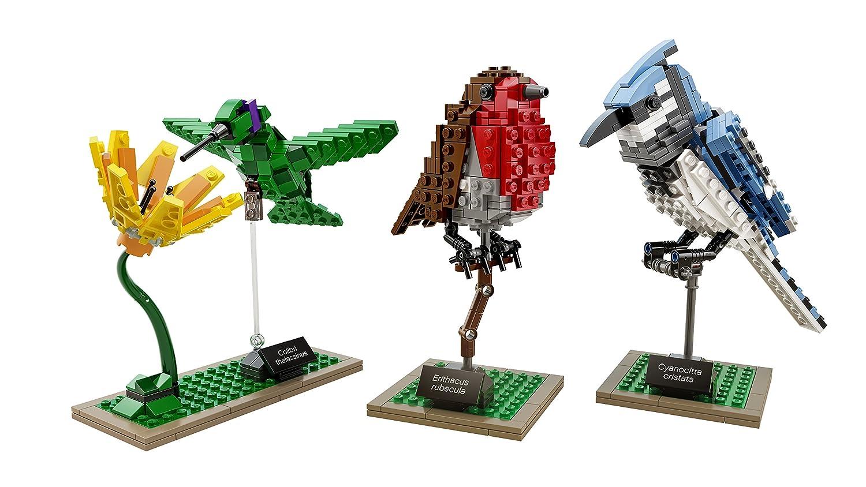 amazon com lego ideas 21301 birds model kit discontinued by
