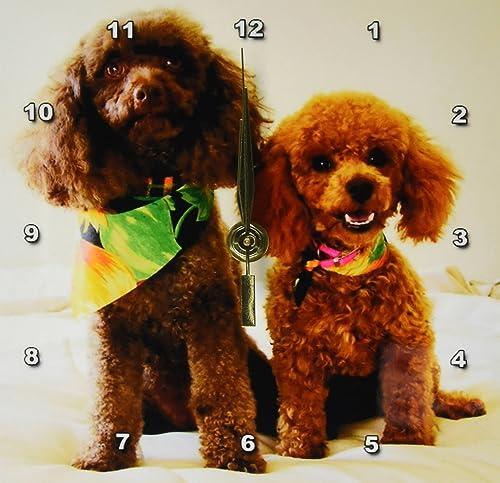 3dRose LLC Poodle Puppy s 6 by 6-Inch Desk Clock