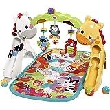 Fisher-Price Tapis de jeu évolutif musical pour bébé avec plus de 12 activités et jouets, dès la Naissance, CCB70