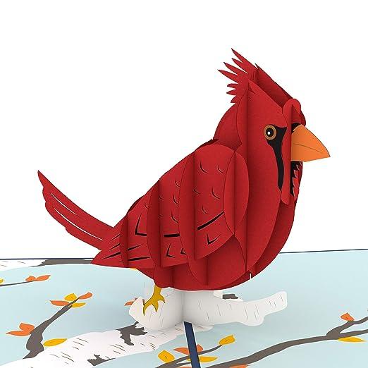 Lovepop Tarjeta emergente cardinal, tarjeta 3D, tarjeta de ...
