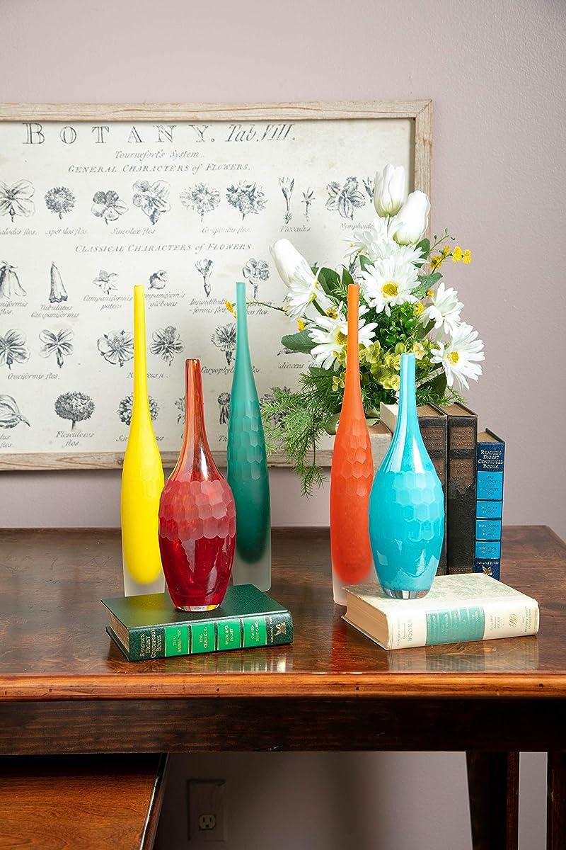 Imax Kepla Glass Vases-Set of Five