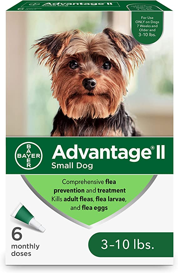 Flea and Lice Treatment for Dogs