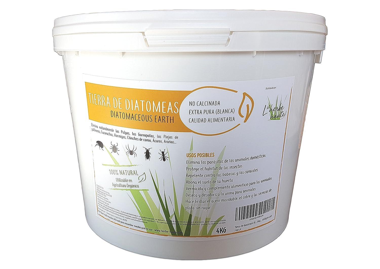 Tierra de diatomeas 4kg alimentaria, no calcinada, blanca – Alta pureza sin tratamiento ni aditivo – Utilizable en agricultura orgánica – Elimina ...