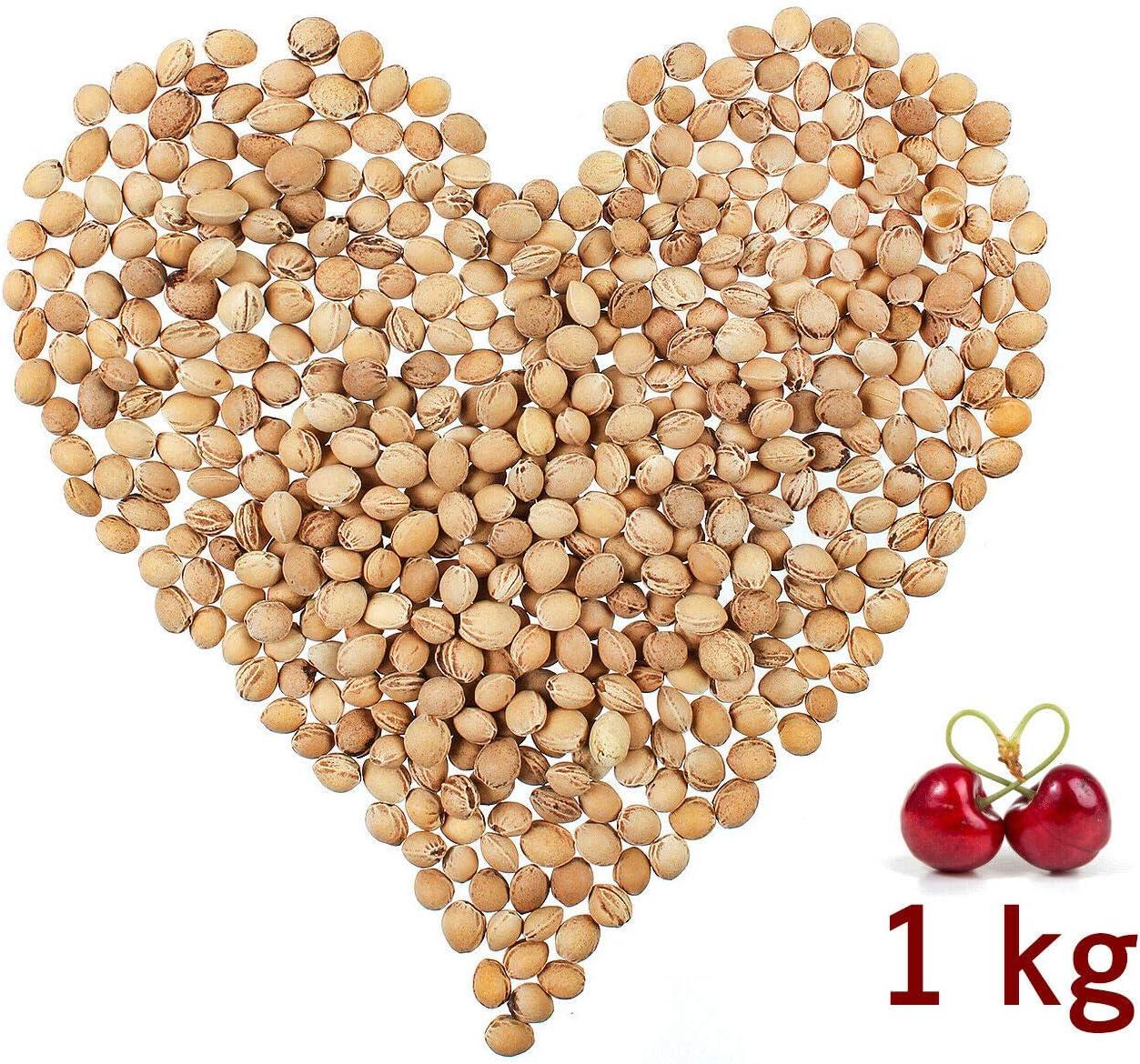 2/kg Eigenmarke Huesos de cereza para relleno de coj/ín