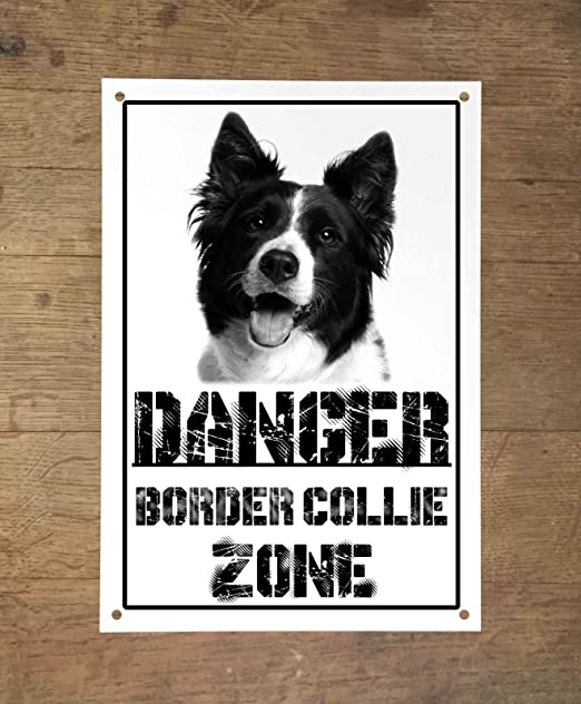 Danger Border Collie Zone - Cartel de metal, diseño de perro ...