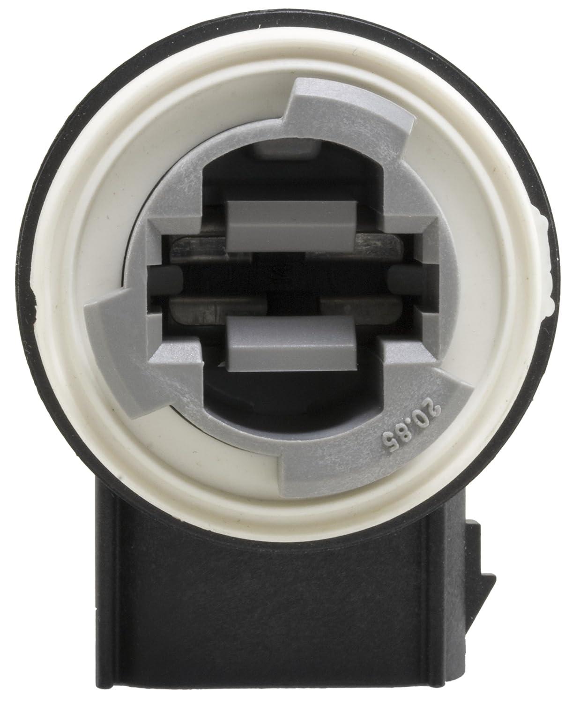 Wells 833 Brake Light Socket