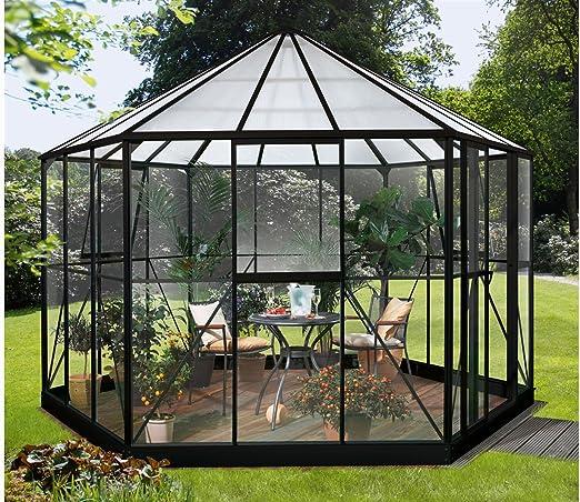Vitavia Hera 9000 - Invernadero (aluminio y cristal, 6 mm), color negro: Amazon.es: Bricolaje y herramientas