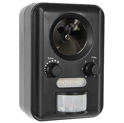Amazon.com: Frostfire Solar funciona con batería Gato y ...