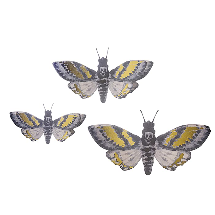 Top 9 Wall Decor Moths