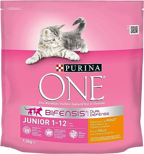 Purina ONE Bifensis Pienso para gatitos Junior Pollo y Cereales 6 ...
